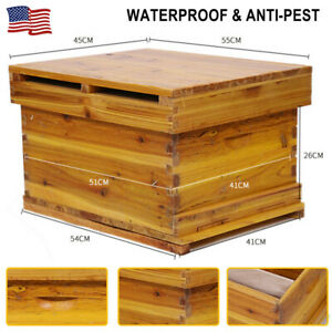 20Pcs Beekeeping Equip Assembled Beehive Frames Wired with Eyelets Nest Frame US