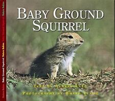 Nature Babies: Baby Ground Squirrel by Aubrey Lang (2004, Paperback)