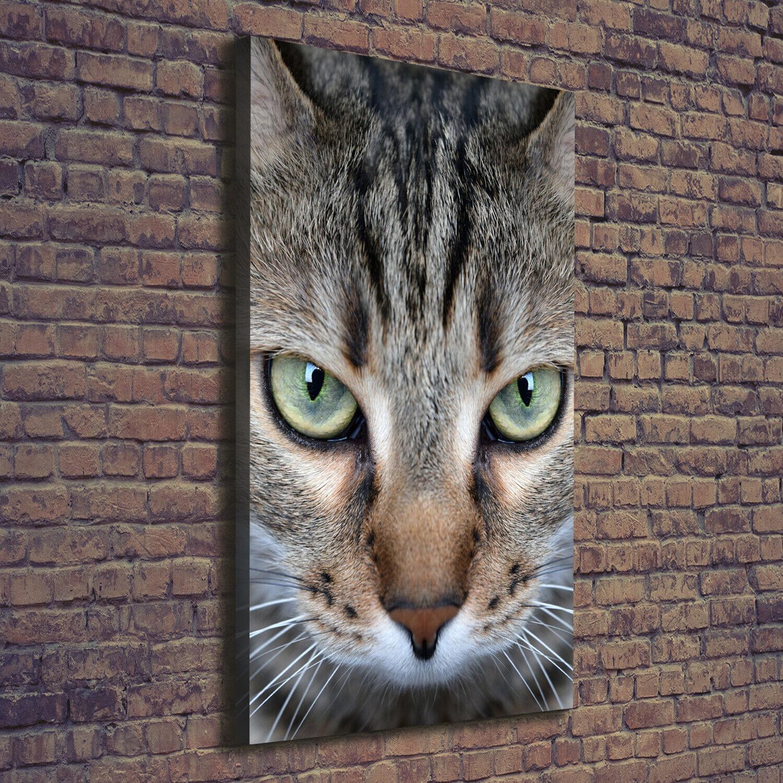 Leinwand-Bild Kunstdruck Hochformat 70x140 Bilder Katzenaugen