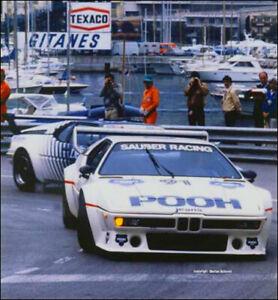 Decal-BMW-M1-Procar-1980-Pooh-Walter-Nussbaumer-1-43