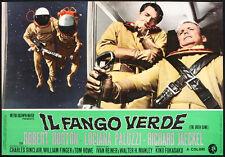 CINEMA-fotobusta IL FANGO VERDE l. paluzzi, K. FUKASAKU