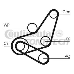 6PK1059T2-CONTITECH-DRIVE-BELT-KIT-6PK1059T2-NEW-O-E-SPEC