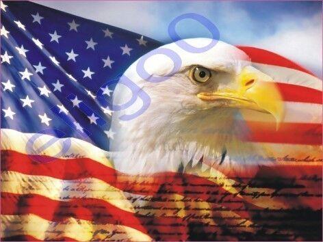 1x STICKER USA AMERICAN EAGLE  patriot decal STATES 10