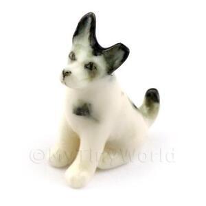 Puppenhaus Miniatur Keramik Schwarz Und Weißer Terrier Hund Ebay