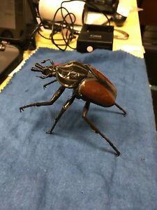Beetle Insect Bug figure