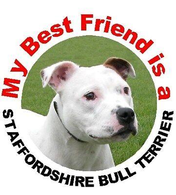 2 Staffordshire Bull Terrier Car Stickers Starprint