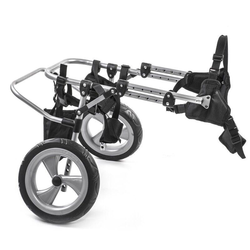 Carrello deambulatore per cane disabile per zampe posteriori - Taglia M
