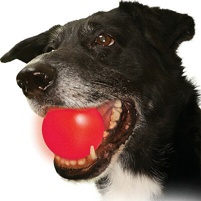 Nite Ize MeteorLight LED Light Up K9 Ball Glowing Dog Toy Float