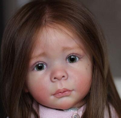 """Hedi Bambola Kit Da Carola Wegerich Rinato Baby Toddler Bambola Kit@24"""" @ Corpo Includono-mostra Il Titolo Originale"""
