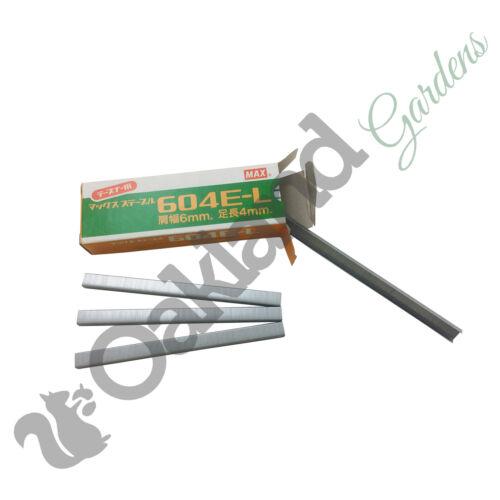 Max Tapener Staples Tying Machine For Max Gun 604EL 6mm Plant Tie 4800 per box