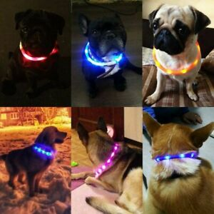 DOTTED-LED-RECHARGEABLE-Light-up-Flash-GLOW-COLLAR-Dog-Pet-MICRO-USB-adjustable
