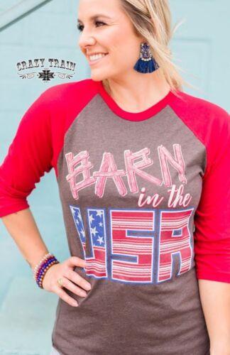 BARN IN THE USA BASEBALL BY CRAZY TRAIN