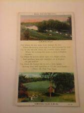 Vtg 1910-30's C.T. W. B.  POSTCARD Pine Tree State, Homestead Folks in Maine