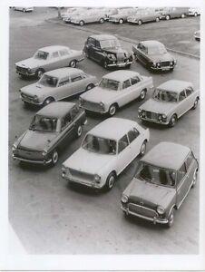 BMC Range 1965 b&w Press Photo No 7606 Mini 1100 A40 A601800 Princess