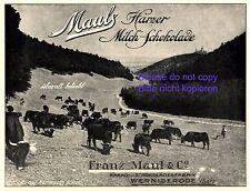 Schokoladenfabrik Maul Wernigerode 1920 Reklame Schokolade Werbung Kakao Harz +