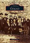 Goliad by Raymond Starr (Paperback / softback, 2009)