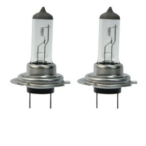 2x h7 55watt 12v 6000k xenon halogen lampen xenon long life birnen autolampen ebay. Black Bedroom Furniture Sets. Home Design Ideas