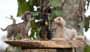 Trio-of-Dachshunds-Teckels-Needle-Felted-Hand-Made-With-Love-OOAK