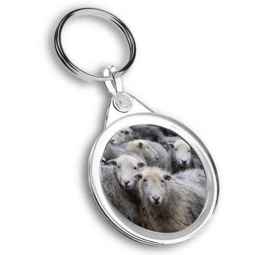 Flock of Herdwick Sheep  #45034 Keyring Circle