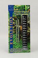 Digitalthermometer Für Aquarien Und Terrarien Zu Aufkleben Digital Thermometer
