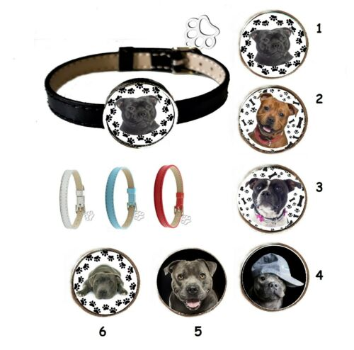 STAFFORDSHIRE BULL TERRIER  austauschbare Medaillons bracelet interchangeable