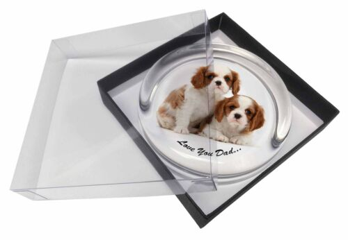 Cavalier King Charles 'Dad' Glass Paper in Gift Box Christmas P, DAD113PW
