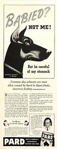 1941-Doberman-Pincher-Dog-art-by-Stan-Ekman-Pard-Dog-Food-vintage-print-ad