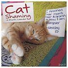 Cat Shaming Willow Creek Press Calendar 9781682343418