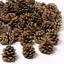 10-Pine-Cones-6-8cm-For-Christmas-Wreath-Making-amp-Handmade-Decorations-Craft thumbnail 2