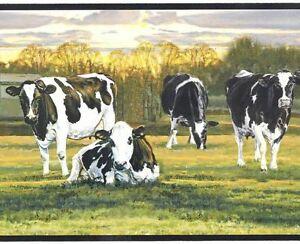 Holstein Black White Cows Easy Walls Wallpaper Border Ffr65382b