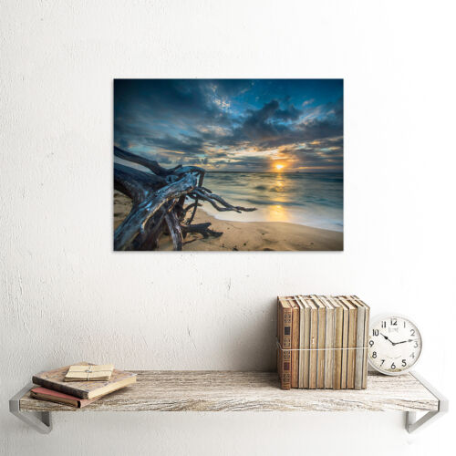 Driftwood Beach Sunset Ocean Wall Art Print