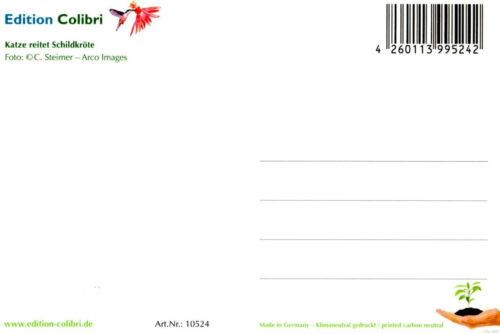 "Postkarten-Set /""50 TIER-BABIES/"" 50 St. ideal für Postcrossing"