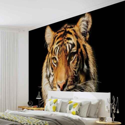 Peint 1964fw Animal Tigre Polaire Papier Murale Mural 8qaHHz