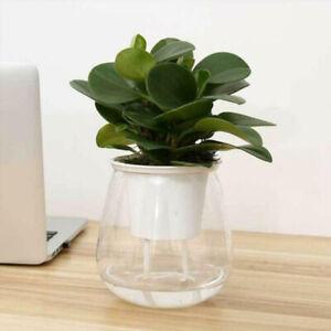 Klear-Plant-Entretien-Stockage-Resine-Reseau-Pot-Clair-Orchidee-Fleurs-Recipient