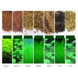Details about Plant Seed Fish Tank Aquarium Aquatic Water Grass Decor  Aquatic Plant Seeds