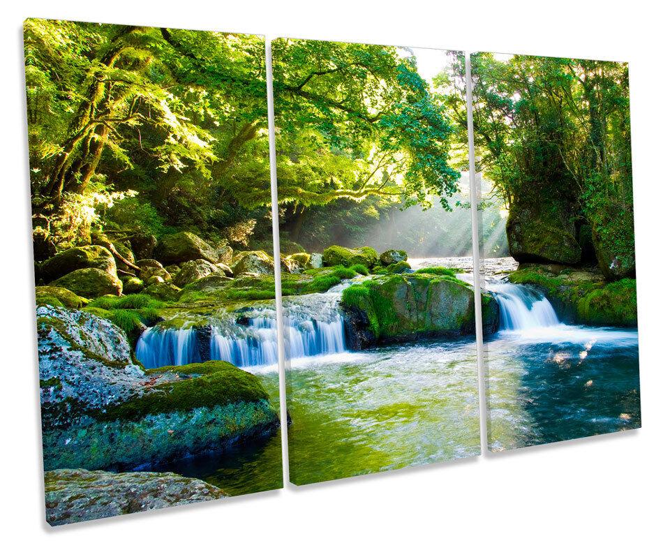 Forest River Landscape Sunlight TREBLE CANVAS Wand Kunst Box Framed Bild