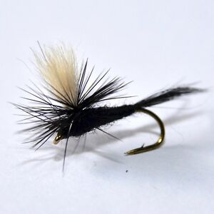GRIFFITHS GNAT Dry Fishing Flies 12 PCS 3 each 12-18 by Dragonflies