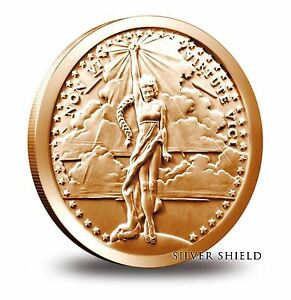 Silver-Shield-Non-Vi-Virtute-1-oz-Copper-Round-Direct-From-Mint-Tube