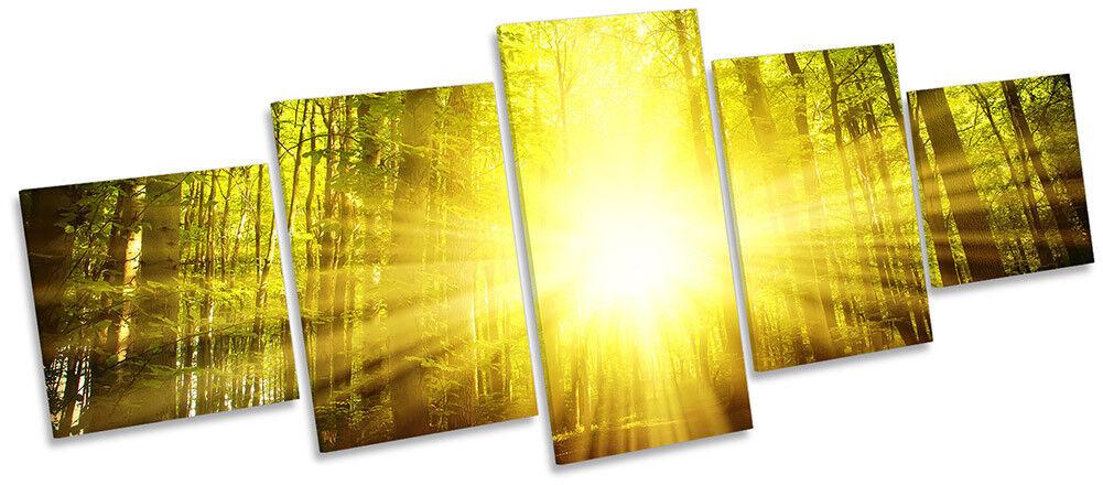 Grün Forest Gelb Sunset Framed CANVAS PRINT PRINT PRINT Five Panel Wall Art 00328f