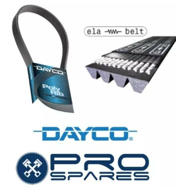 Dayco 4PKE808 Elastica Drive Belt