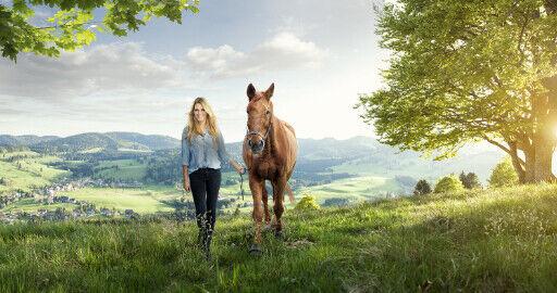 horseybiz