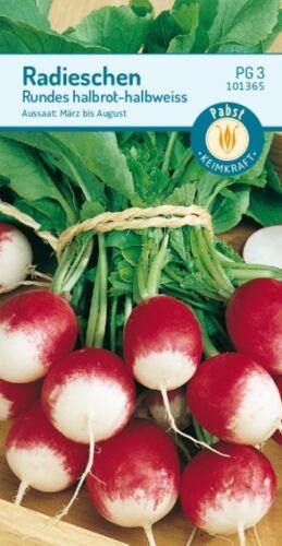 Radieschen Rundes halbrot-halbweiß 2x 101365 Saatgut Gemüse Samen Sämereien