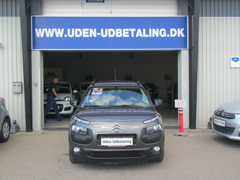 Citroën C4 Cactus 1,6 BlueHDi 100 SkyLine