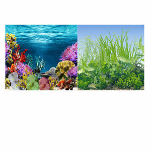19 3 x 48 double sided fish tank aquarium background for Double fish tank