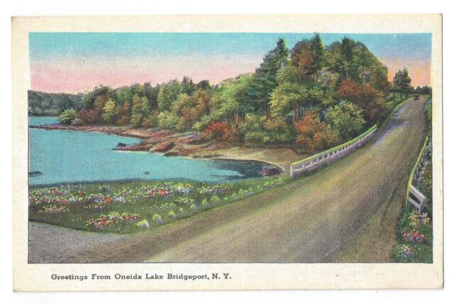 VINTAGE POSTCARD ONEIDA LAKE BRIDGEPORT NY CENTRAL UPSTATE NEW YORK TICHNOR BROS