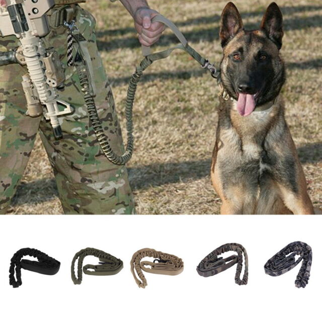 Outdoor Puppy Dog Training Walk Military Tactical Leash Elastic Bungee Strap  EA