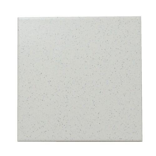 Remplacement carreau sol SEREL e1248 TOROS gris blanc tacheté 20 x 20 cm