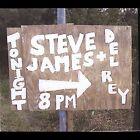Steve James + Del Rey [Digipak] by Steve James (Blues) (CD, Dec-2004, Hobemian)