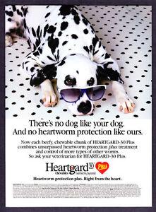1994-Dalmation-Dog-wearing-Sunglasses-photo-Heartgard-30-Plus-promo-print-ad