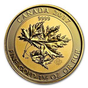 2017 1 5 Oz Canadian Gold Maple Leaf 150 Coin 9999 Fine The Megaleaf Rcm Ebay